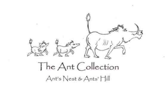 Ant Collection Logo - original